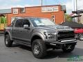 2019 Magnetic Ford F150 Shelby BAJA Raptor SuperCrew 4x4  photo #7