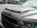 2019 Magnetic Ford F150 Shelby BAJA Raptor SuperCrew 4x4  photo #31