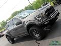 2019 Magnetic Ford F150 Shelby BAJA Raptor SuperCrew 4x4  photo #37