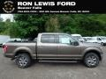 2019 Stone Gray Ford F150 XLT SuperCrew 4x4 #133312410