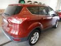 2014 Sunset Ford Escape Titanium 1.6L EcoBoost 4WD  photo #4
