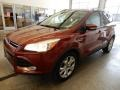 2014 Sunset Ford Escape Titanium 1.6L EcoBoost 4WD  photo #10