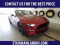 2019 Ruby Red Ford Mustang GT Fastback  photo #1