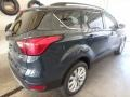2019 Baltic Sea Green Ford Escape SEL 4WD  photo #2