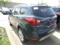 2019 Baltic Sea Green Ford Escape Titanium  photo #3
