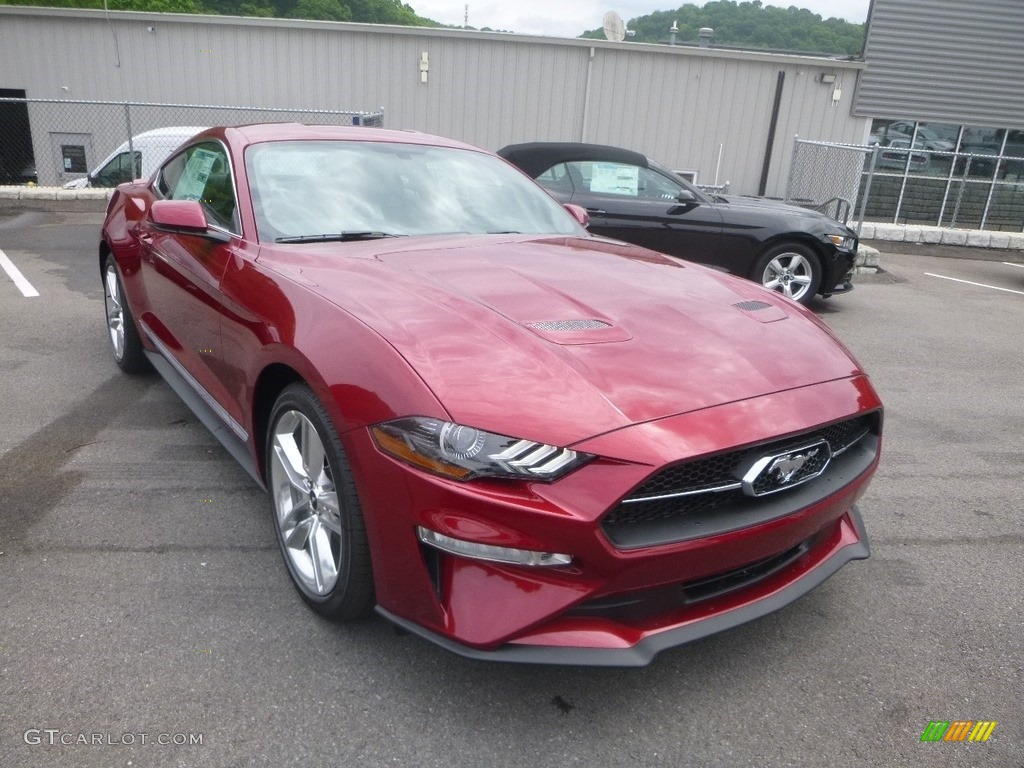 2019 Mustang EcoBoost Premium Fastback - Ruby Red / Ebony photo #3
