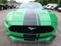 2019 Need For Green Ford Mustang GT Fastback  photo #7