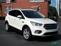 2017 White Platinum Ford Escape Titanium 4WD  photo #7