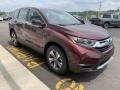 2019 Basque Red Pearl II Honda CR-V LX AWD  photo #4