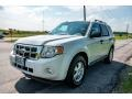 2009 Oxford White Ford Escape XLT V6 4WD  photo #8