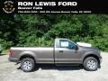 2019 Stone Gray Ford F150 XLT Regular Cab 4x4  photo #1