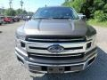 2019 Stone Gray Ford F150 XLT Regular Cab 4x4  photo #10