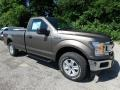2019 Stone Gray Ford F150 XLT Regular Cab 4x4  photo #11