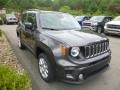 2019 Granite Crystal Metallic Jeep Renegade Latitude 4x4  photo #8