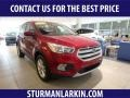 2019 Ruby Red Ford Escape SE 4WD #133995475