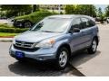 2010 Opal Sage Metallic Honda CR-V LX  photo #3