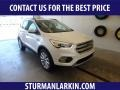2019 White Platinum Ford Escape SEL 4WD #134099352