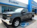 2019 Shadow Gray Metallic Chevrolet Silverado 1500 WT Regular Cab  photo #1