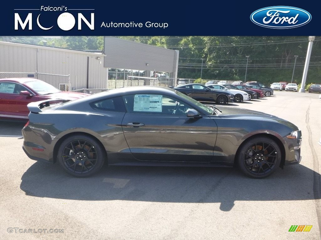 2019 Mustang EcoBoost Fastback - Magnetic / Ebony photo #1