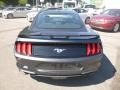 2019 Magnetic Ford Mustang EcoBoost Fastback  photo #6