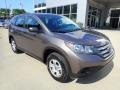 2013 Kona Coffee Metallic Honda CR-V LX AWD  photo #9
