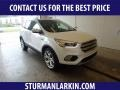 2019 White Platinum Ford Escape Titanium 4WD  photo #1