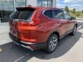 2019 Basque Red Pearl II Honda CR-V EX-L  photo #7