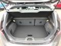 2019 Magnetic Ford Fiesta ST Hatchback  photo #4