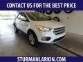 2019 White Platinum Ford Escape SE 4WD #134726071