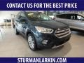 2019 Baltic Sea Green Ford Escape SEL 4WD #134726070