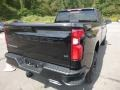 2020 Black Chevrolet Silverado 1500 LT Trail Boss Crew Cab 4x4  photo #5