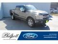 2019 Magnetic Ford F150 Platinum SuperCrew 4x4  photo #1