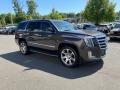 Gray Silk Metallic 2015 Cadillac Escalade Luxury 4WD