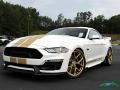 2019 Oxford White Ford Mustang Shelby GT-H Coupe  photo #1