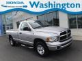 2003 Bright Silver Metallic Dodge Ram 1500 SLT Regular Cab 4x4 #135449608