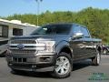 2019 Magnetic Ford F150 Platinum SuperCrew 4x4 #135449522