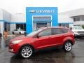 2014 Sunset Ford Escape Titanium 2.0L EcoBoost 4WD #135671342