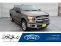 2019 Stone Gray Ford F150 XLT SuperCrew 4x4 #135671400