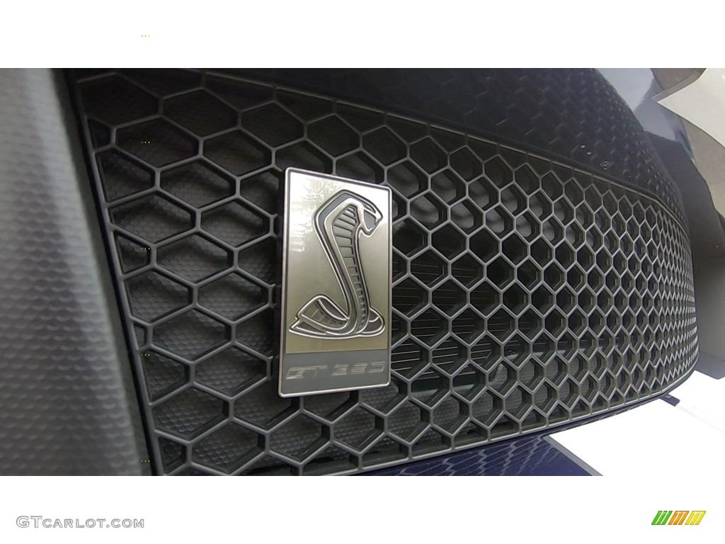 2019 Mustang Shelby GT350 - Kona Blue / GT350 Ebony Leather/Miko Suede photo #29
