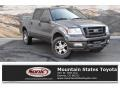 Dark Shadow Grey Metallic 2004 Ford F150 FX4 SuperCrew 4x4