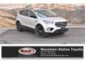 2019 Ingot Silver Ford Escape SE 4WD #135762586