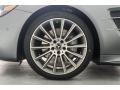 designo Selenite Grey Magno (Matte) - SL 550 Roadster Photo No. 9