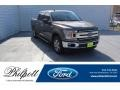 2019 Stone Gray Ford F150 XLT SuperCrew #135943371