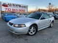 2004 Silver Metallic Ford Mustang Convertible #136127690