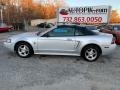 2004 Silver Metallic Ford Mustang Convertible  photo #2