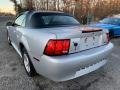 2004 Silver Metallic Ford Mustang Convertible  photo #4