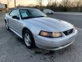 2004 Silver Metallic Ford Mustang Convertible  photo #9