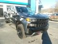 2020 Shadow Gray Metallic Chevrolet Silverado 1500 Custom Trail Boss Crew Cab 4x4  photo #3