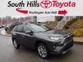 Magnetic Gray Metallic 2019 Toyota RAV4 Limited AWD