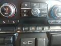2020 Black Chevrolet Silverado 1500 RST Crew Cab 4x4  photo #22
